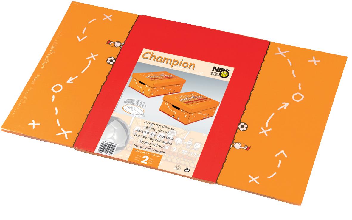CHAMMPION Aufbewahrungsboxen Mit Deckel Als 2er Packung Flachliegend Verpackt In Recyclingfähiger PE-Folie Mit Entsorgungsgarantie (Grüner Punkt) Und Verkaufsförderndem Einleger Mit Leicht Verständlicher Aufbauanleitung