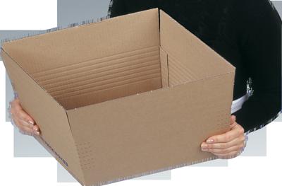 NIPS PACK-BOX